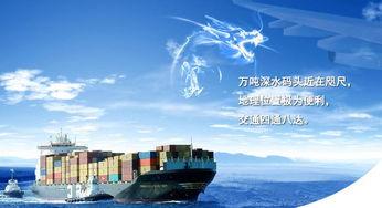 宁波力推港口物流信息化 与国际船公司实现信息对接
